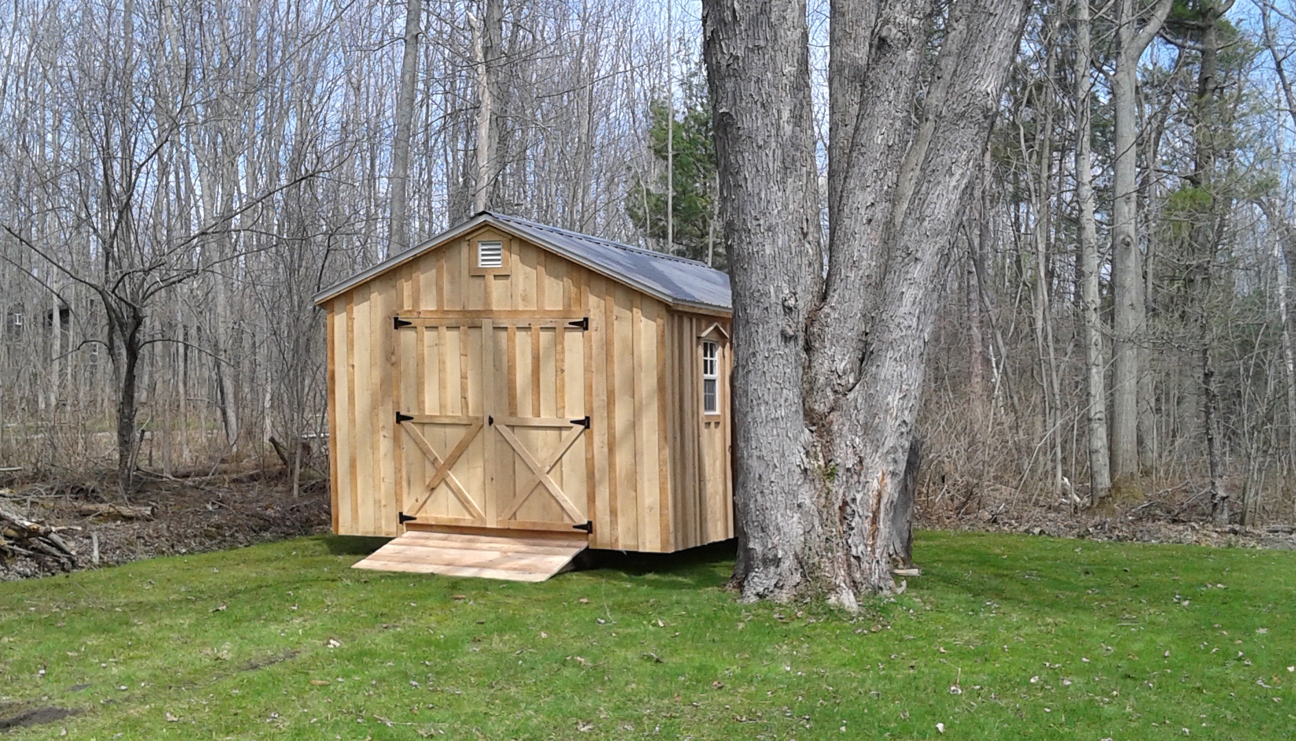 Amish Shed - Between A Swamp & Tree