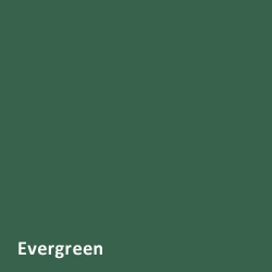 new-evergreen
